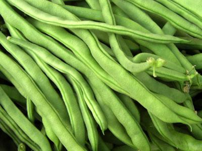 gruene-bohnen-pict0005.jpg
